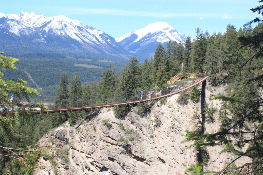 PHOTOS: The highest suspension bridges in Canada just opened in B.C. - North Delta Reporter